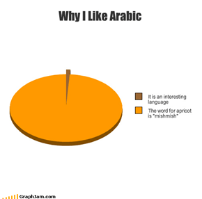 Why I Like Arabic