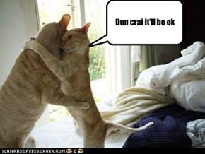 Dun crai it'll be ok