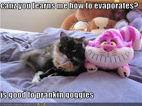 canz you learns me how to evaporates?  is good fo prankin goggies