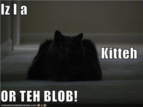 Iz I a Kitteh OR TEH BLOB!