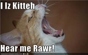 I Iz Kitteh  Hear me Rawr!