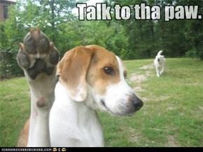 Talk to tha paw.