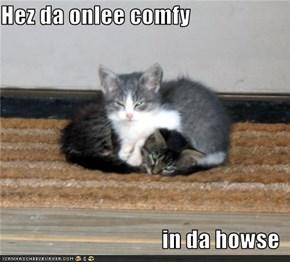 Hez da onlee comfy  in da howse