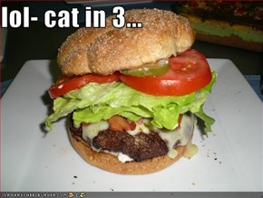 lol- cat in 3...