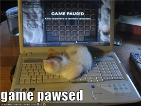 game pawsed