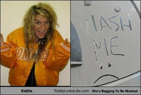 Ke$ha Totally Looks Like She's Begging To Be Washed