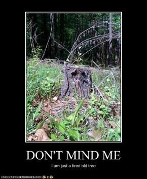 DON'T MIND ME