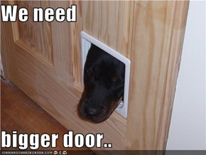 We need  bigger door..