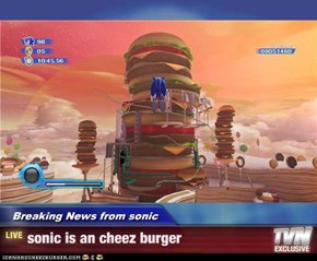 Breaking News from sonic - sonic is an cheez burger