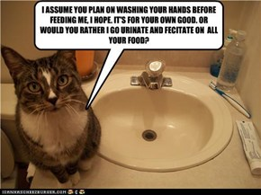 I ASSUME YOU PLAN ON WASHING YOUR HANDS BEFORE FEEDING ME, I HOPE. IT'S FOR YOUR OWN GOOD. OR WOULD YOU RATHER I GO URINATE AND FECITATE ON  ALL YOUR FOOD?
