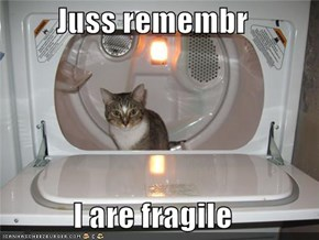 Juss remembr  I are fragile