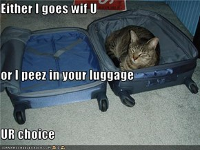 Either I goes wif U or I peez in your luggage UR choice