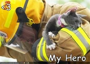 <3  My Hero