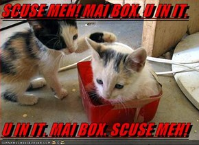 SCUSE MEH! MAI BOX. U IN IT.  U IN IT. MAI BOX. SCUSE MEH!
