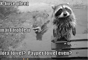 X-kuse pleez mai I troble u fora towel?  Payper towel even?
