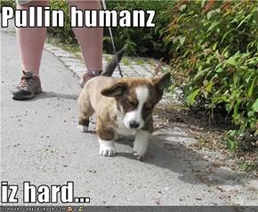 Pullin humanz  iz hard...