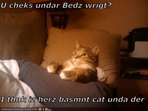 U cheks undar Bedz wrigt?   I thnk iz herz basmnt cat unda der