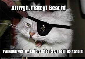 Arrrrgh, matey!  Beat it!