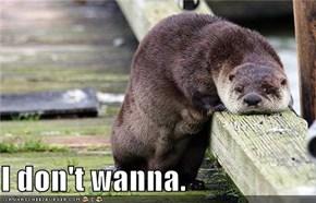 I don't wanna.