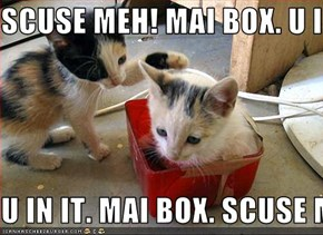 SCUSE MEH! MAI BOX. U IN IT  U IN IT. MAI BOX. SCUSE MEH!