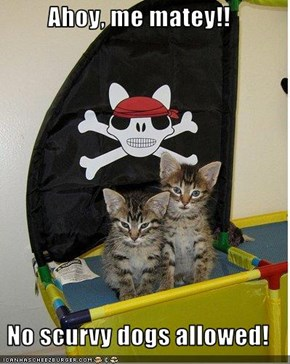 Ahoy, me matey!!  No scurvy dogs allowed!