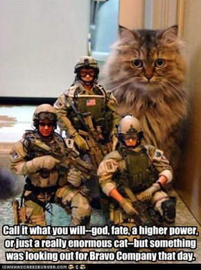 Call it what you will--god, fate, a higher power, or just a really enormous cat--but something was looking out for Bravo Company that day.