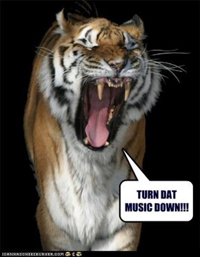 TURN DAT MUSIC DOWN!!!