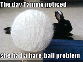 The day Tammy noticed  she had a hare-ball problem