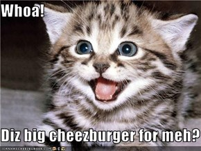 Whoa!  Diz big cheezburger for meh?