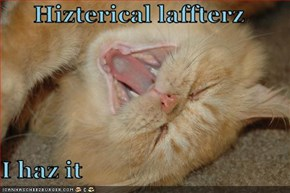 Hizterical laffterz  I haz it