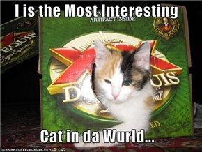 I is the Most Interesting   Cat in da Wurld...