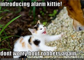 introducing alarm kittie!  dont worry bout robbers again^.^