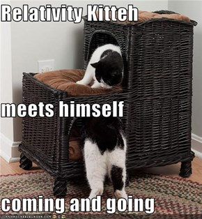 Relativity Kitteh  meets himself coming and going