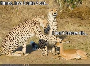 Hunee, he's 2 cute 2 eet... I don't beleev dis...
