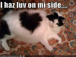 I haz luv on mi side....