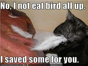 No, I not eat bird all up.  I saved some for you.
