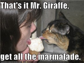 That's it Mr. Giraffe,   get all the marmalade.