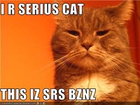 I R SERIUS CAT  THIS IZ SRS BZNZ