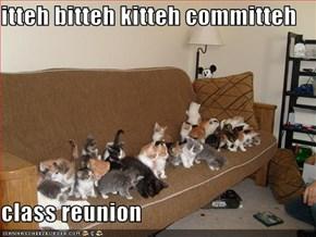 itteh bitteh kitteh committeh  class reunion
