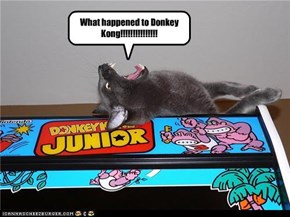 What happened to Donkey Kong!!!!!!!!!!!!!!!