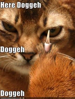 Here Doggeh Doggeh Doggeh