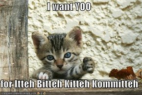 I want YOO  for Itteh Bitteh Kitteh Kommitteh
