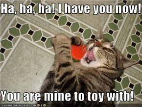 Ha, ha, ha! I have you now!  You are mine to toy with!