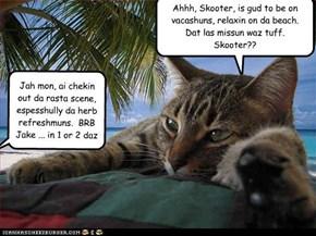 Jake and Skooter - Underkover Katz - Episode 7