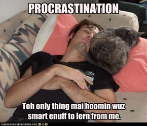 PROCRASTINATION - Teh only thing mai hoomin wuz smart enuff to lern from me.