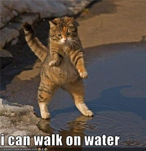 i can walk on water