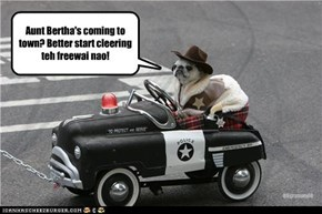 Aunt Bertha's coming to  town? Better start cleering teh freewai nao!