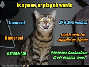 Is a pune, or play ob wurds