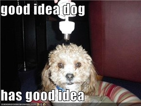 good idea dog  has good idea
