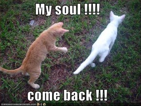 My soul !!!!  come back !!!